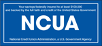 Your savings are federally insured to at least $250,000 by NCUA.
